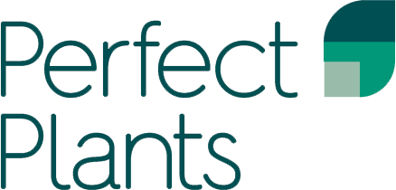 Perfect_Plants_logo.png